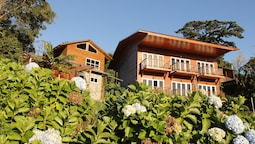 Hotel Bosque Verde Lodge
