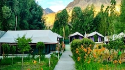 Valley Flower Camp Nubra