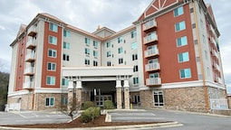 Holiday Inn Express & Suites Asheville Downtown