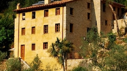 Almora Bed & Breakfast