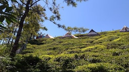 Janardan Tea Resort