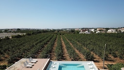 Studio in Faro, With Shared Pool, Enclosed Garden and Wifi - 6 km From