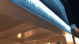 BLUE STEAK WONDER NAGAHAMA